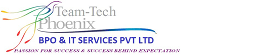 Team-Tech Phoenix Services Pvt Ltd